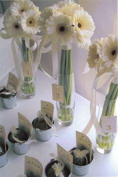 wedding Inspration. Love those white daisies! Get them at http://www.bridesign.com/ Centre pieces?