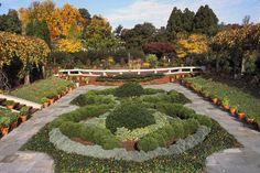 national arboretum - DC