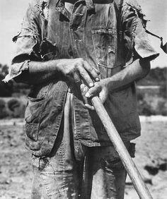 Dorothea Lange - Hoe Culture,  near Anniston, Alabama 1936