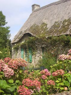 Irish cottage with vintage hydrangeas