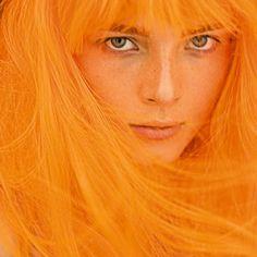 .orange via iiiinspired