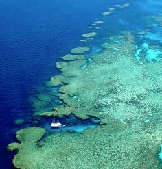 Out on the Great Barrier Reef in the Whitsundays - Bait Reef showing the Stepping Stones dive site at the top of the image and Wings Diving Adventures in the lagoon on the reef