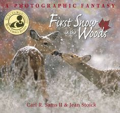 Stranger in the Woods - First Snow in the Woods book