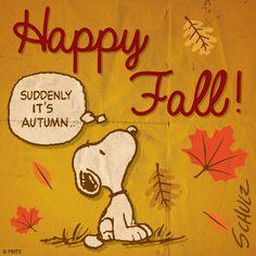 Happy Fall! thanksgiv, seasons, autumn, charli brown, happi fall, snoopi, october, snoopy, peanut gang