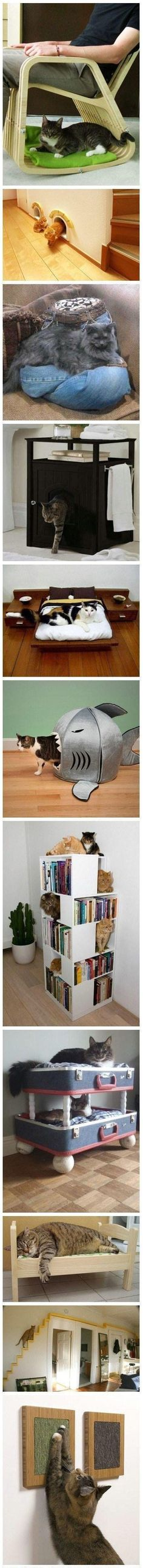 Furniture for cats... :)
