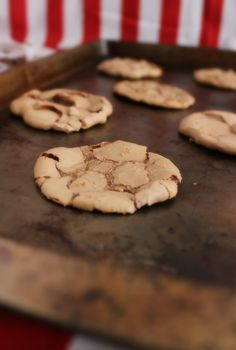 Milk Chocolate Melt-in-your-Mouth Cookies | Chelsea's Messy Apron