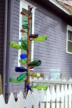nice Southern tree :) modern gardens, garden decor, xmas trees, garden design, beauti garden, bottle trees, bottl garden, bottles, bottl tree