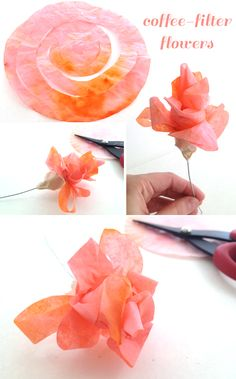 DIY - Flowers from coffee filters and cupcake wrappers