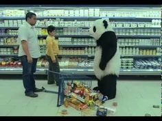 Never say no to Panda!!!! ( Original video )  this will forever make me laugh