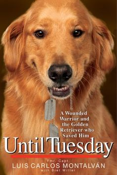 Great Book. What more is there?  A great dog, a US Soldier, and the story of them together.