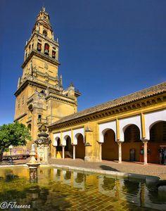 Córdoba en Mayo. Reflejos en el Patio de Los Naranjos  Spain
