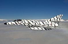 Flying ZEBRA Super Entendard