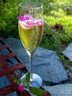 englisch rosen, champagne, food, bed, drink, magazin, vintage roses, rose cocktail, rose petals