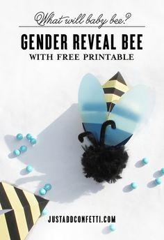 gender reveal bee ca