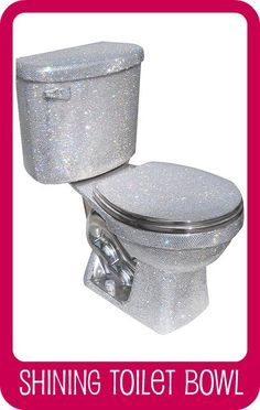 CLEANING HARD WATER STAINS FROM TOILETS