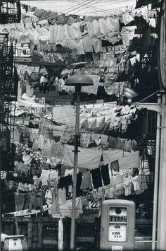 Hoboken, New Jersey, 1954, photo by Elliott Erwitt