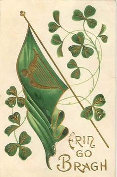 irish heritage, erin go bragh, ireland forev, st patrick