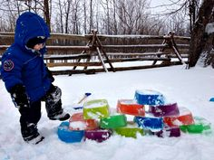 Fill tupperware containers with water and food coloring to make ice bricks for winter fun