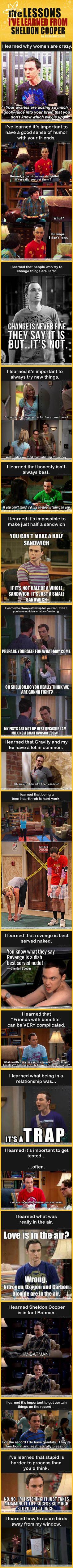geek, big bang, sheldon cooper, laugh, giggl, funni, life lessons, bang theori, bangs