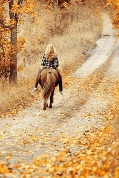 Horse back riding on a fall day