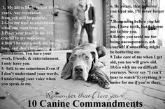 Canine Commandments. I made this for my dog's room.