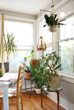 house tours, plant hangers, plant holders, hanging plants, plant stands