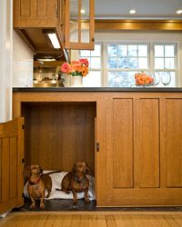 Two little dachshunds find a space in a remodeled kitchen below the beverage center!