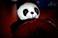 Whoopie Panda.
