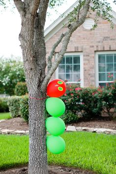 """Photo 1 of 37: The Very Hungry Caterpillar / Birthday """"Twins First Birthday Party""""   Catch My Party"""