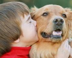 Dogs and Cats Make Babies Healthier