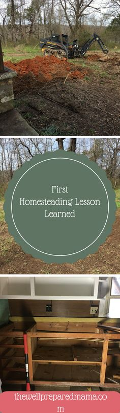 First Homesteading L