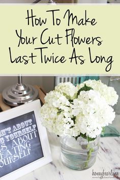 Make your flowers last twice as long! how to cut flowers, flowers for cutting, cut flower care, long lasting cut flowers