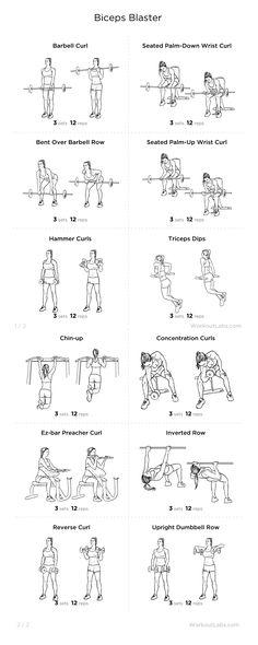 Biceps Blaster Workout
