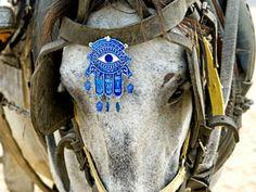evil eye protected donkey