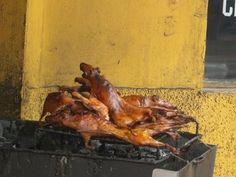 In and Around Banos, Ecuador. A dish called Qui or guinea pig as we know it. Its quite good!