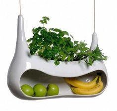 Interesting fruit bowl