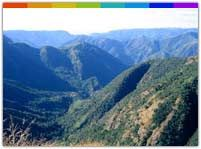 Mawsynram is an extremely beautiful village in the Khasi Hills of Meghalaya. It receives an annual rainfall of 11.872 m . Reportedly it is the wettest spot in the world and tourists from across the globe come here for holidays.