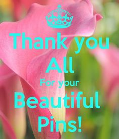 Thank you for all your beautiful pins.