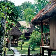 """""""When I think back to the lodge in the jungle, the beautiful hut, the ghostly environment far from the hustle and bustle of the world, it would be hard to think of a more romantic spot. I dream of my return"""""""