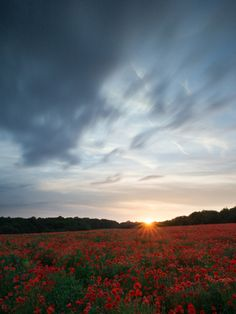 How to Shoot Landscapes at Sunset