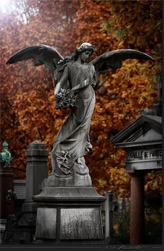 Angels statue in autumn colour.