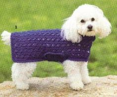 crochet a sweater for your dog http://www.momsloveofcrochet.com/CrossStitchDogSweater.html thanks so xox