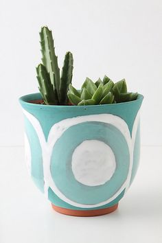 I wanna make this!!! Culinary Herb Pot #anthropologie