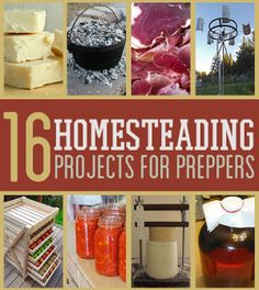 Homesteading Projects... not just for preppers!