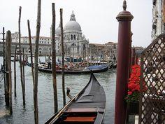 Venice, Italy #Wanderlust #Europe #Italy #Venice #Travel