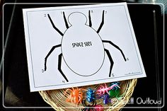 Spider Sort  - learning about spiders from @maureenspell