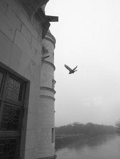 23: 雪濃梭堡Chateau de Chenonceau - garconsKé