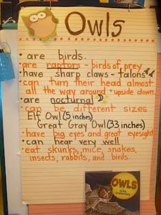 Kinder non fiction writing!