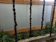 Actual real pinecone rainchain at the Indiana Flower & Patio Show...now through March 17th...Indiana State Fairgrounds!!!