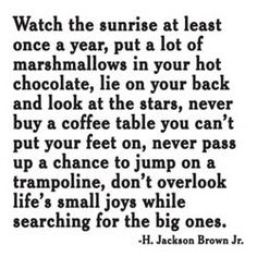 don't overlook life's small joys while searching for the big ones // h. jackson brown, jr.